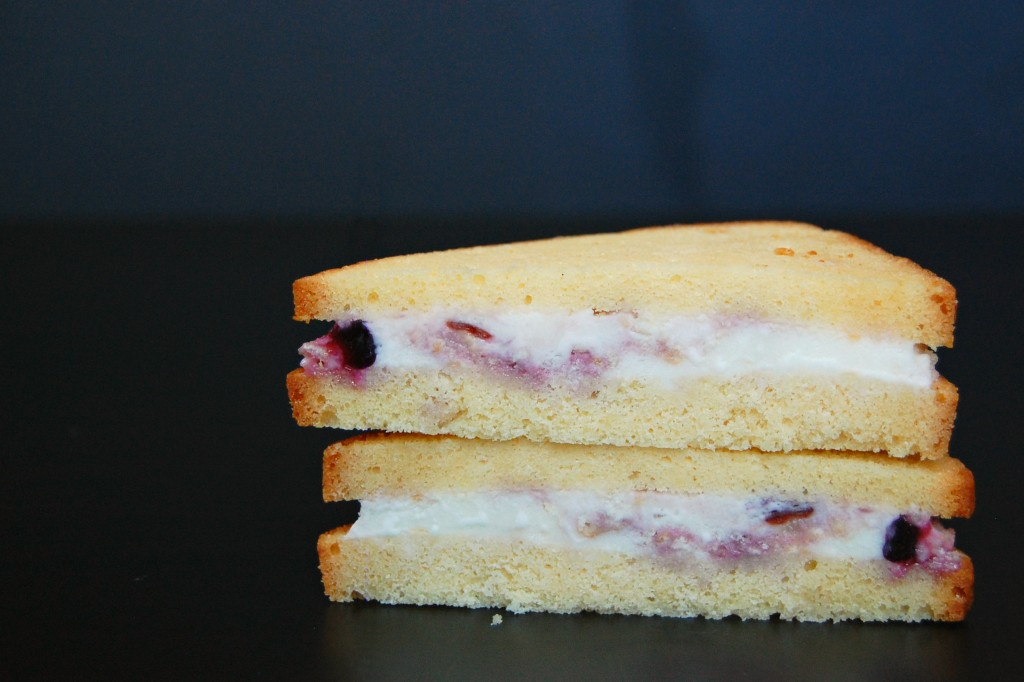 ice cream sandwich1469