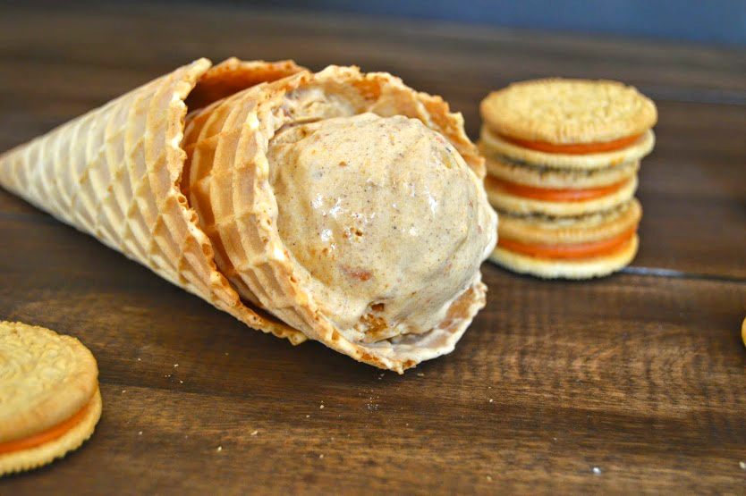 pumpkin ice cream 0042