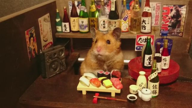 hamster sushi